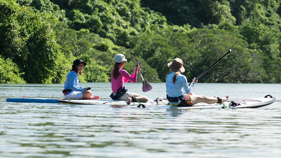 マングローブ林の川面に浮かぶSUPに乗った3人の女性